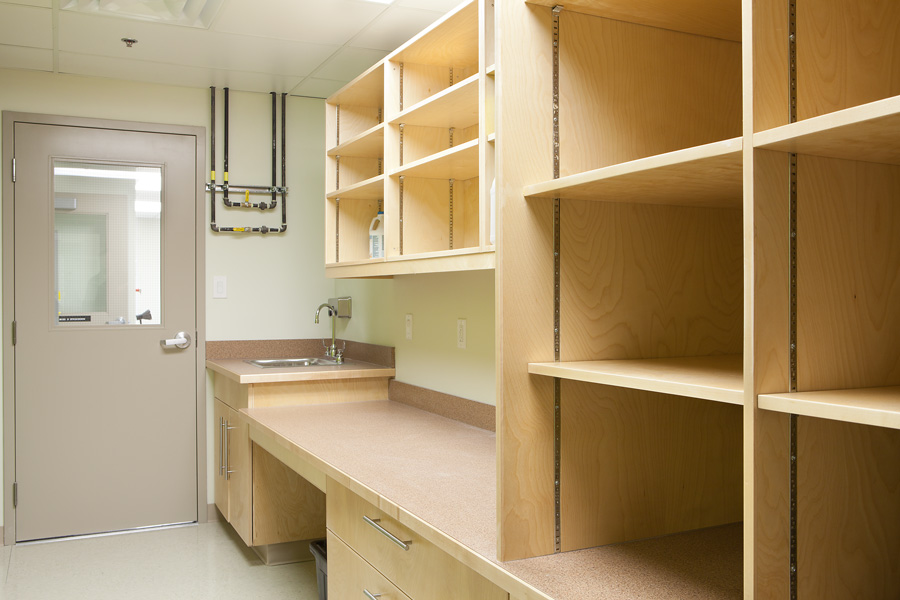 Image of a science prep room with storage cabinets, work counter, sink and gas piping.